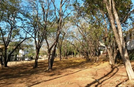Lotes Tamarindo Centro – Three adjacent lots in residential area in the middle of Tamarindo