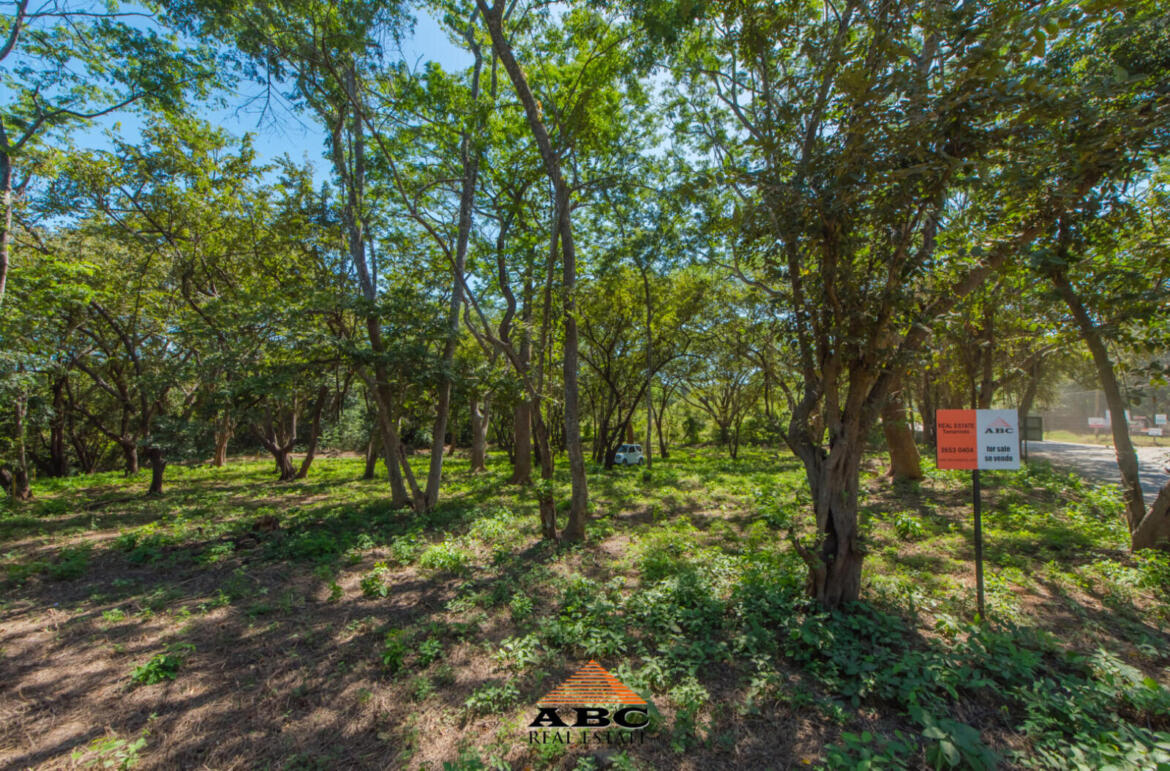 Lot for sale in Tamarindo/Langosta